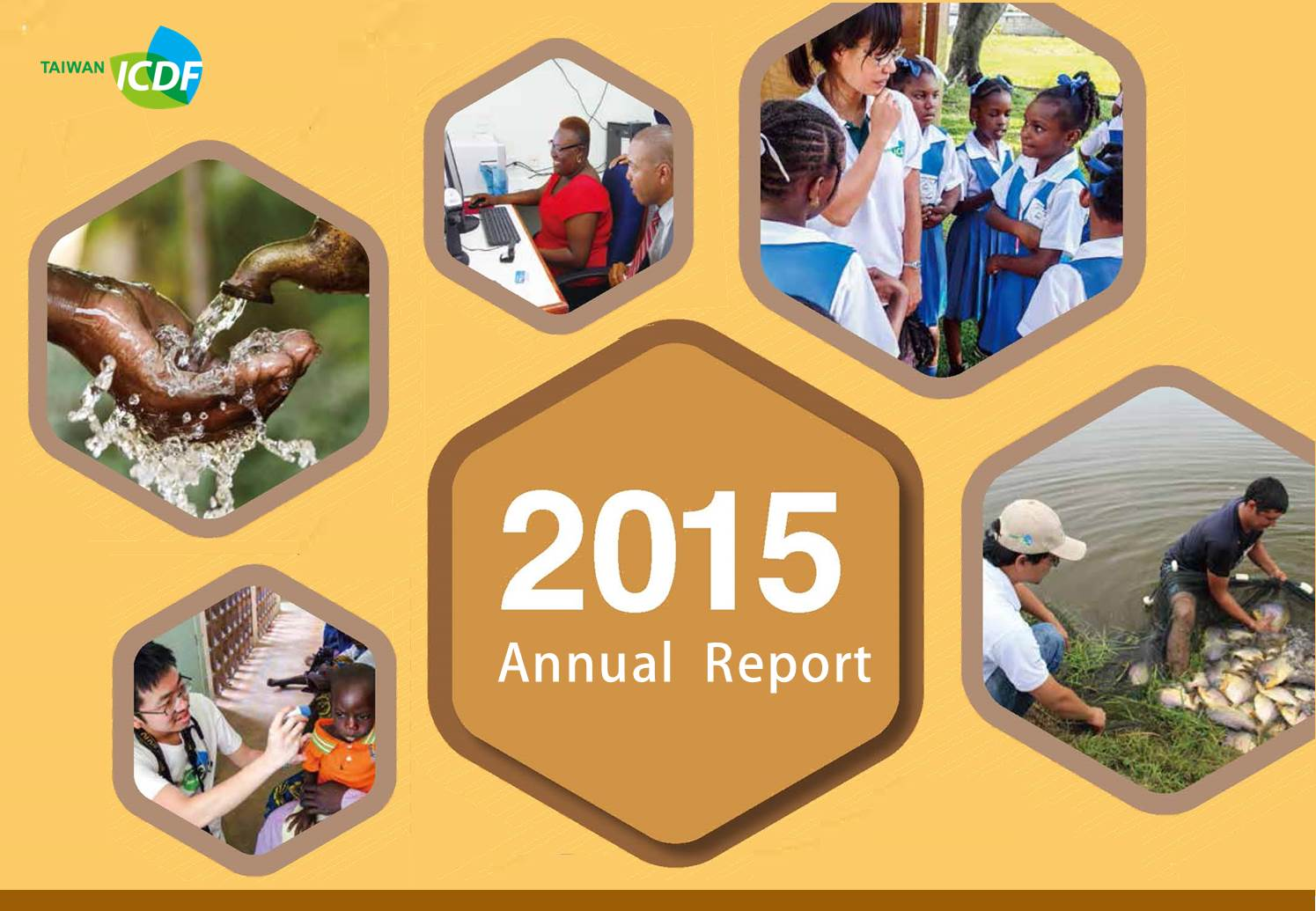 TaiwanICDF 2015 Annual Report in short video