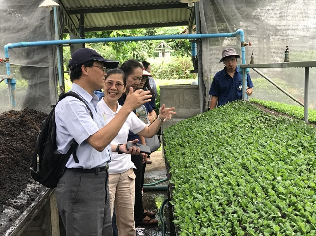 TaiwanICDF assists Thailand's Royal Project Foundation in improving floral breeding, propagation and post-harvest technology