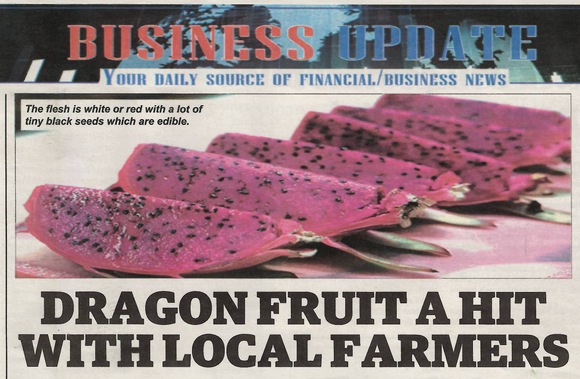 Dragon Fruit A Hit with Local Farmers in Eswatini