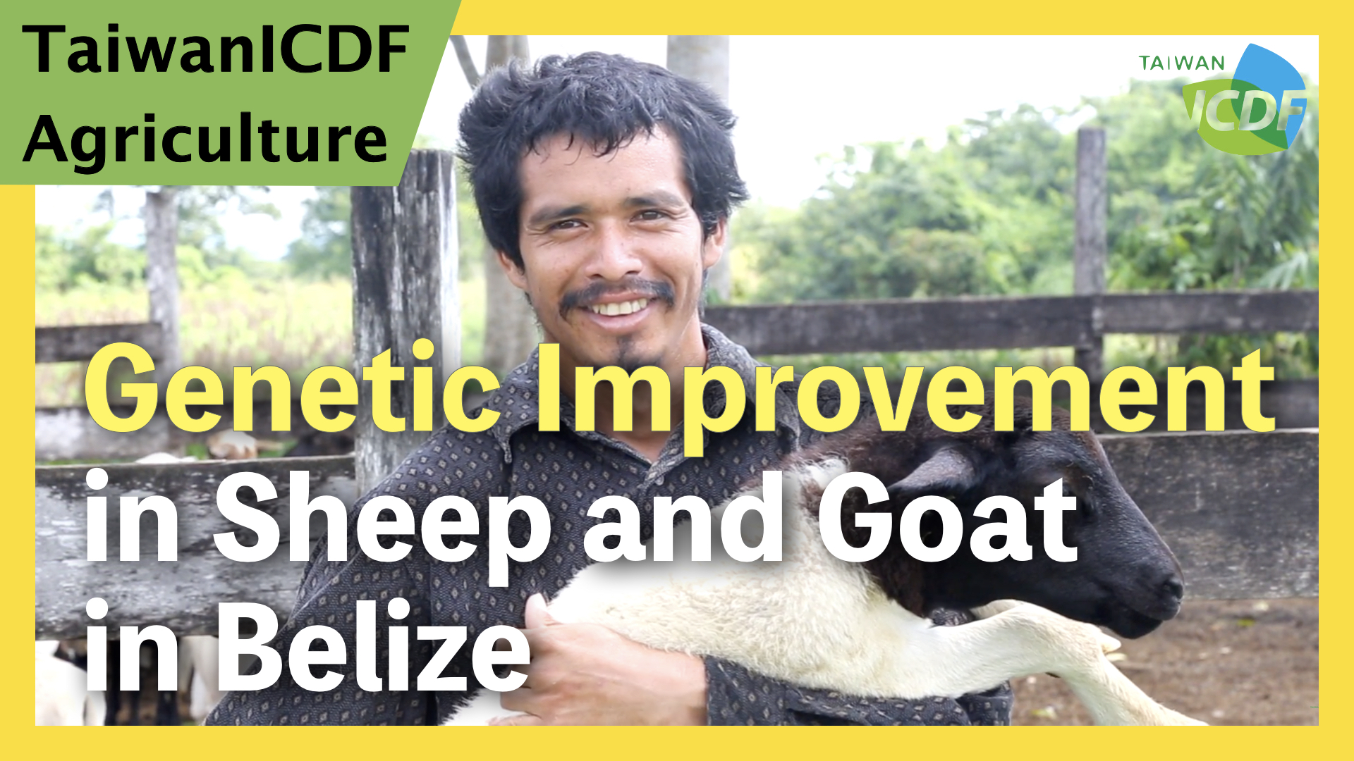Genetic Improvement in Sheep and Goat Project (Belize)