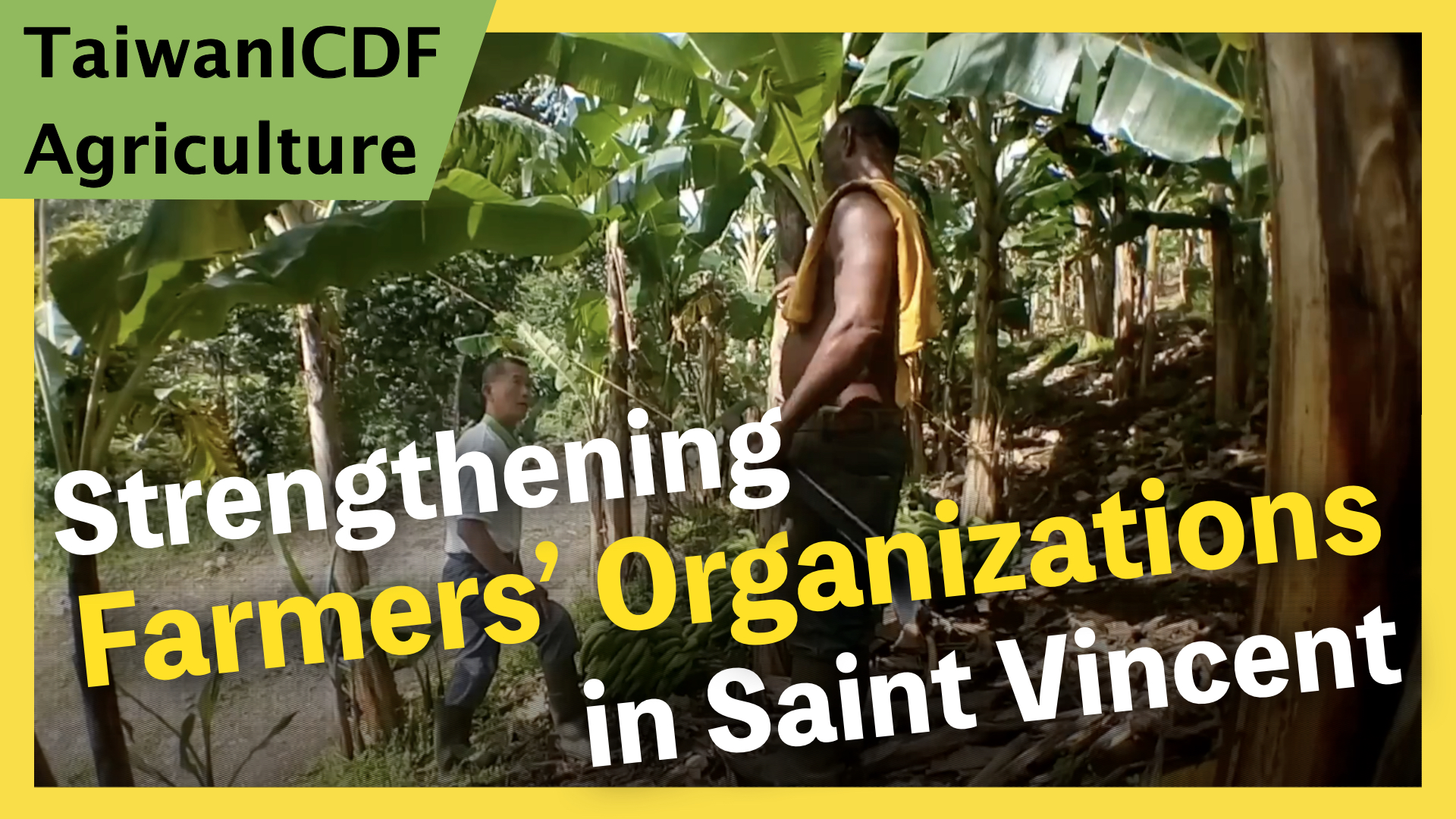 Project for Strengthening Farmers' Organizations in Saint Vincent and the Grenadines