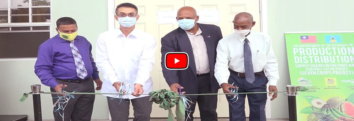 Opening Ceremony of Fruit and Vegetable Post-Harvest Treatment and Packing House in St. Lucia