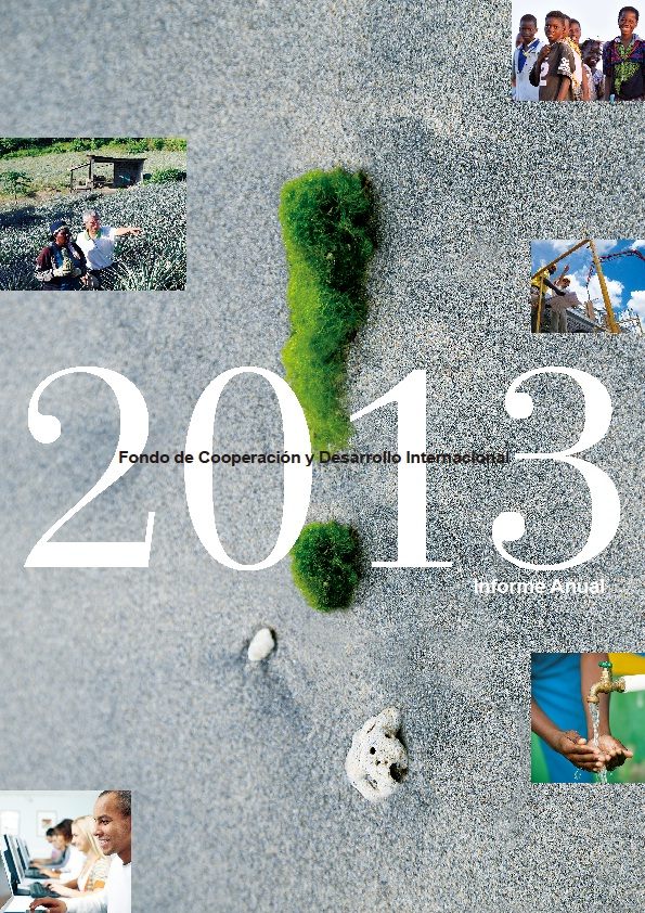 Informe Anual 2013(Android、iOS、PDF)